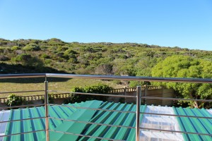 Shell Room: Fynbos Area View