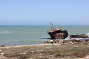 Meisho Maru No. 38 Shipwreck (1982)